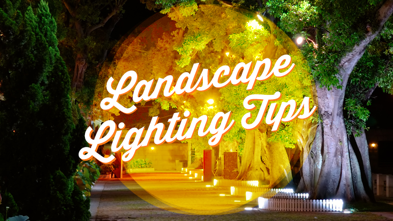 Don't Overlook the Beauty of Exterior Lighting in Your Landscaping Plan
